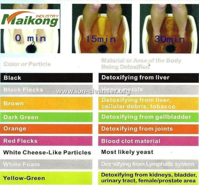 ion cleanse foot bath color charts