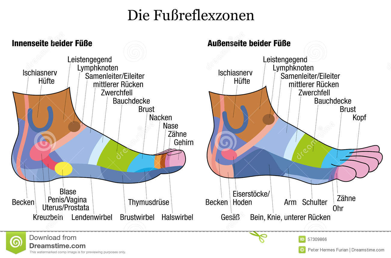 ankle reflexology foot chart picture